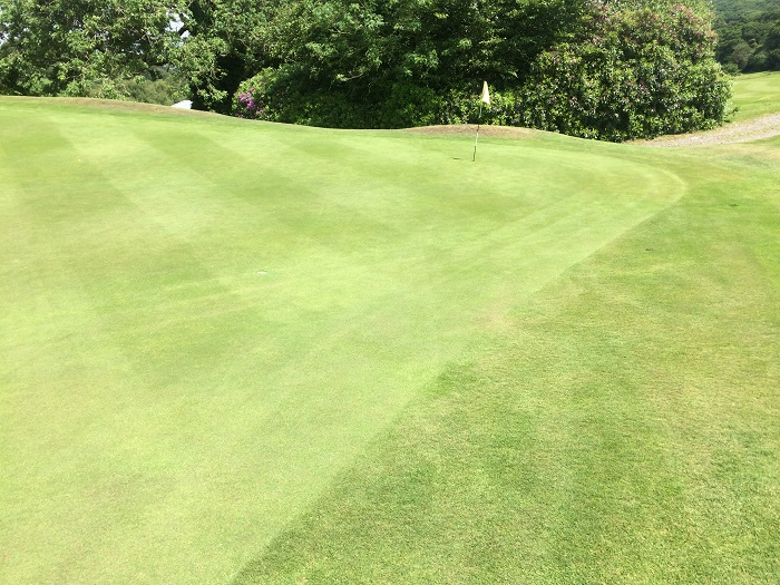 Golf club trials enriched biochar to eliminate fungicide use