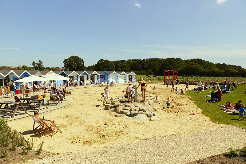 Piglets introduce beach play to land locked York