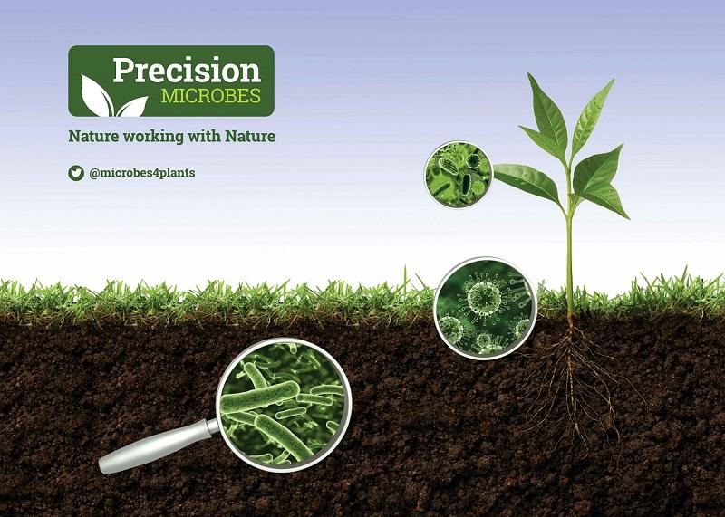 Precision Microbes brings new ingredients to SALTEX