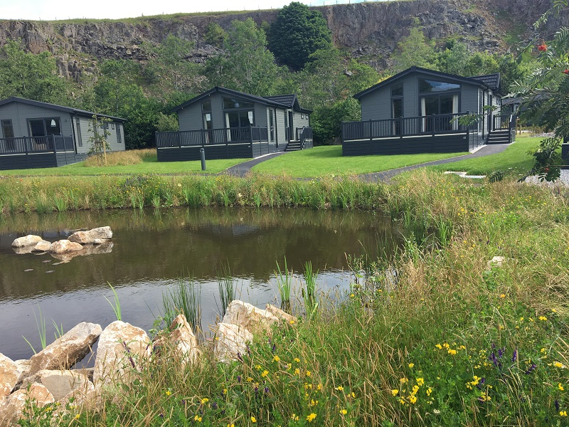 A wildflower makeover in the Peak District for  new Darwin Escapes lodge resort