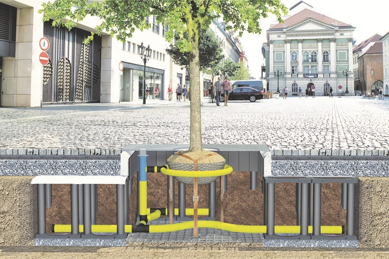 A safe haven for urban trees