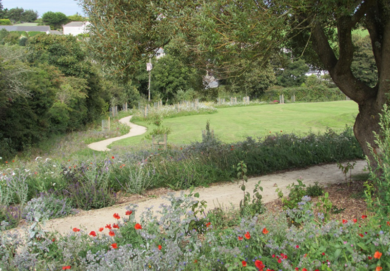 Wildflower Turf helps deliver green infrastructure project