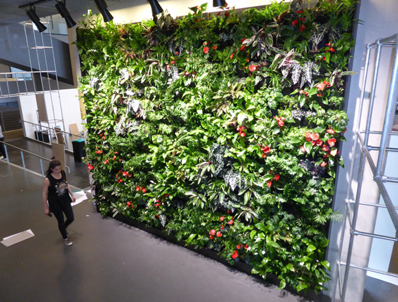 Conference to consider the ABC of biophilic cities