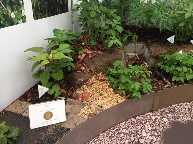 Property Care Association wins medal at Chelsea Flower Show