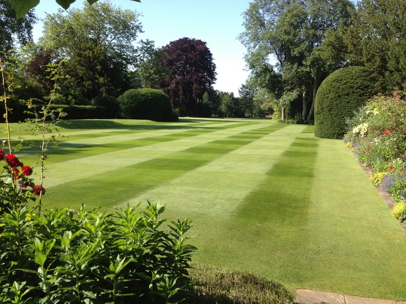 The Lawn Association is launched