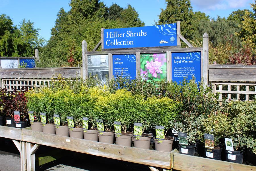 UK's first recyclable pots arrive at Hillier Nurseries