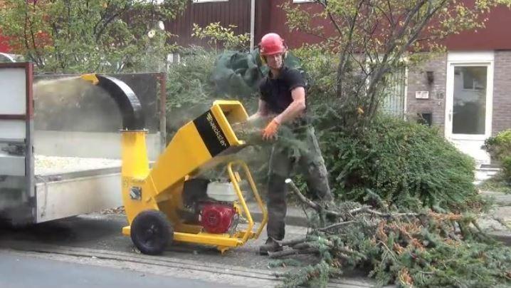 Tree felling and shredding Haecksler – Vario-