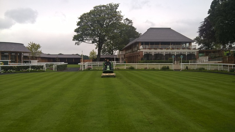 A day at the races for Groundkeeper and Profihopper