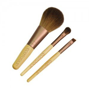 Set Pensule Machiaj EcoTools Mini Essentials Set