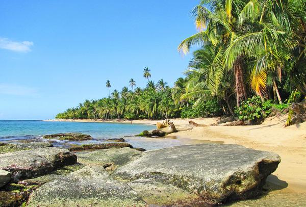 Palmengesäumter Strand von Punta Uva