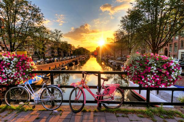 Typisch für Amsterdam: Blumen, Fahrräder, Grachten