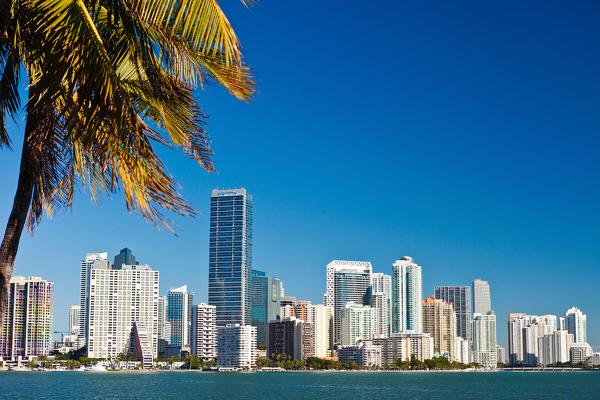 Skyline von Miami Downtown