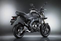 Kawasaki Z125 29