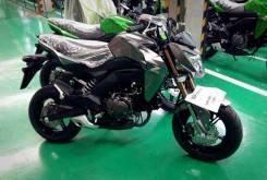 Kawasaki Z125 principal
