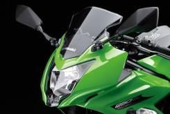 Kawasaki Ninja 250SL 1