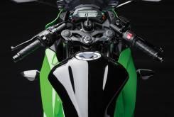 Kawasaki Ninja 250SL 5