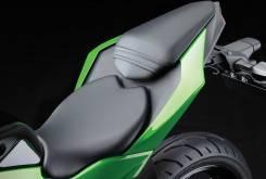 Kawasaki Ninja 250SL 6