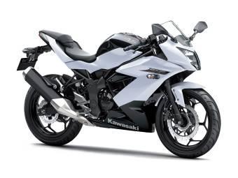 Kawasaki Ninja 250SL 8