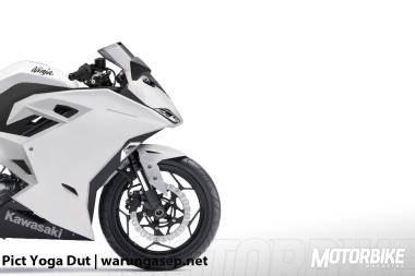 Kawasaki Ninja 300R 2017
