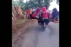 Sidecar India 6