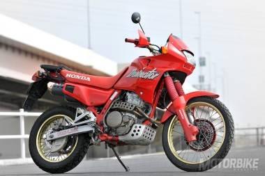 Honda Dominator 2017