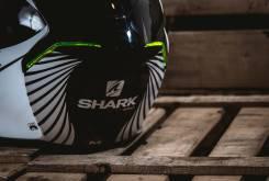 Shark Skwal17