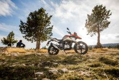 BMW G 310 GS 2017 estaticas3