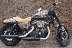 Harley Davidson Roadster Battle Kings 08