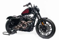 Harley Davidson Roadster Battle Kings 11
