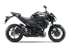 Kawasaki Z800 2016 07