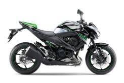Kawasaki Z800 2016 10