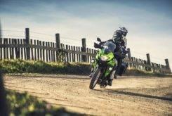 Kawasaki Versys X 300 2017 13