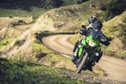 Kawasaki Versys X 300 2017 14