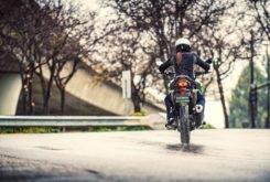 Kawasaki Versys X 300 2017 25