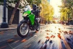 Kawasaki Versys X 300 2017 26
