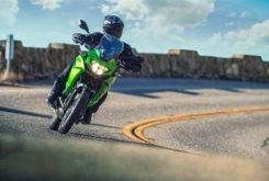 Kawasaki Versys X 300 2017 33