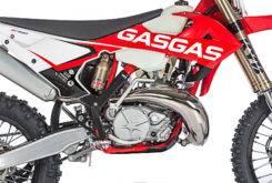 Gas Gas EC 250 300 2018 06