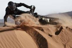 Harley Davidson 1200 Roadster Desert Wolves Solitario 02