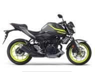Yamaha MT 03 2018 15