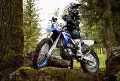 Yamaha WR450F 2018 22