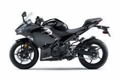 Kawasaki Ninja 400 20183