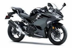 Kawasaki Ninja 400 20184
