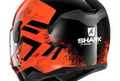 SHARK D Skwal (38)