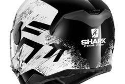 SHARK D Skwal (39)