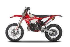 Gas Gas EnduroGP 250 300 2018 15