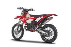 Gas Gas EnduroGP 250 300 2018 16
