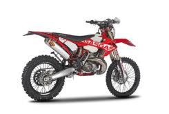 Gas Gas EnduroGP 250 300 2018 17