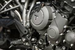 Triumph Tiger 800 XRT 2018 Fotos Detalle 11