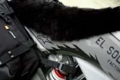 KTM 350 EXC F Dirt Wolf El Solitario 13
