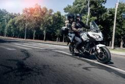 Kawasaki Versys 650 2018 12